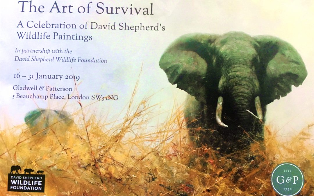 Art of Survival Exhibition